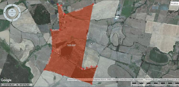 arriendo-campo-70-has-chillan-huape-ganaderia---agricultura-460